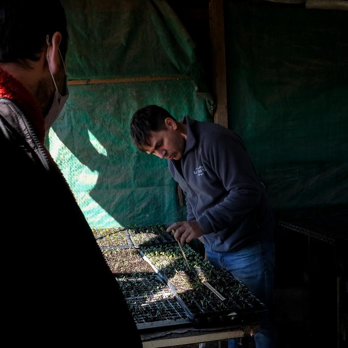 Nuestro guia explicando acerca de la germinacion y creacion de plantines y esquejes en la huerta organica de La Pebeta