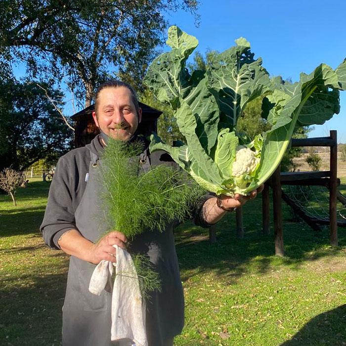 Recolectando y cosechando verduras y hortalizas para ir a cocinar